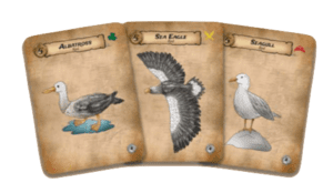 set of three bird cards for Pirate Party Women of the High Seas a card game from Seaport Games